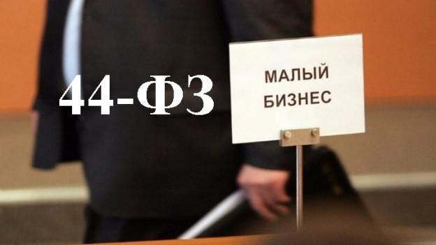 СМП и госзакупки по 44-ФЗ, фото
